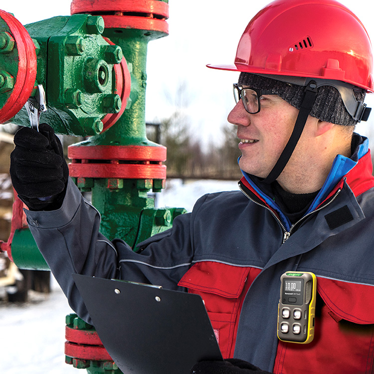 BW™ Icon+ - Multi-Gas Detection - Specialty Gas Detection - Honeywell Analytics - Electrogas